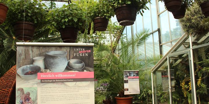 Botanischer Garten Potsdam